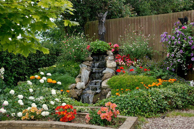 4 Exciting New Features for Your Garden